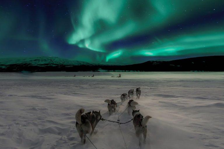 Peste 7.000 km cu autorulotele în tur organizat în Finlanda