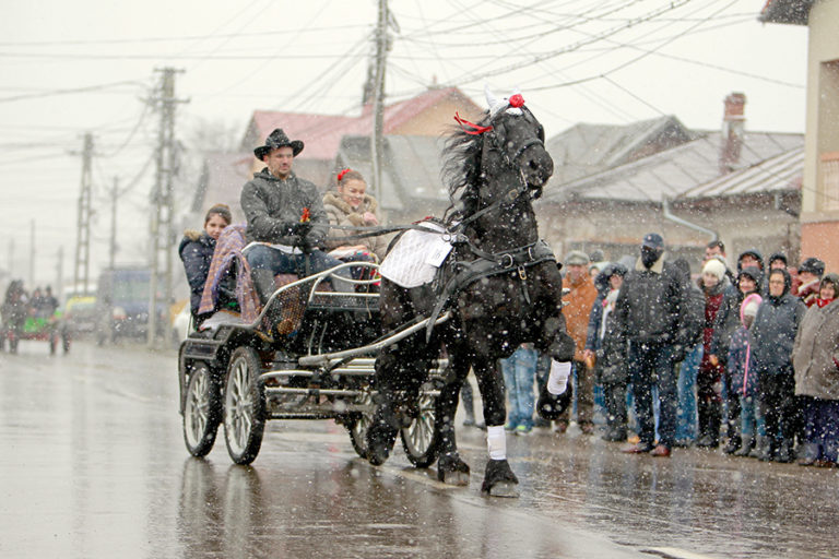 """""""Tudorița"""" sau """"Paștele cailor"""" – tradiție bulgărească la Târgoviște"""